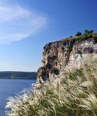 Feather grass Reserve Podolsk Tovtry — Stock Photo