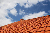 New red rooftop against blue sky — Foto Stock