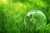 Concepto del ambiente — Foto de Stock