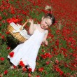 Summer child picking flowers — Stock Photo #6361695