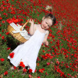 Summer child picking flowers — Stock Photo