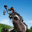 Stock Photo: Golf bag , golfing equipment