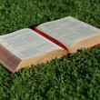 Open christian bible or gospel — Stock Photo