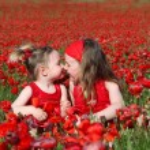 Little girls sitting in summer poppy field — Stock Photo