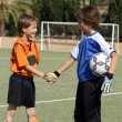 Kids shaking hands before football or soccer match - Stock Photo