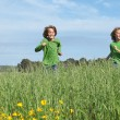 Healthy fit kids running through field - Foto de Stock