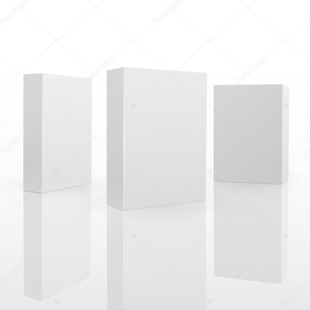 Blank pack fo software or other product. 3d vector illuctration — Stock Vector #5780581