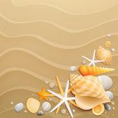 贝壳和砂背景上 starfishes — 图库矢量图片