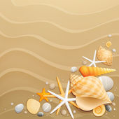 Shells and starfishes on sand background — Vecteur