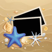 Pictures, shells and starfishes on sand background — Stock Vector