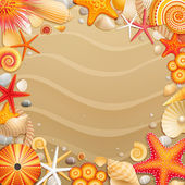 Shells and starfishes on sand background. — Stock Vector