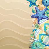 Infradito e conchiglie sulla spiaggia — Vettoriale Stock