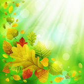 Autumn background with colorful leaves — Stock Vector