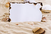 砂の上の焼き付け紙 — ストック写真