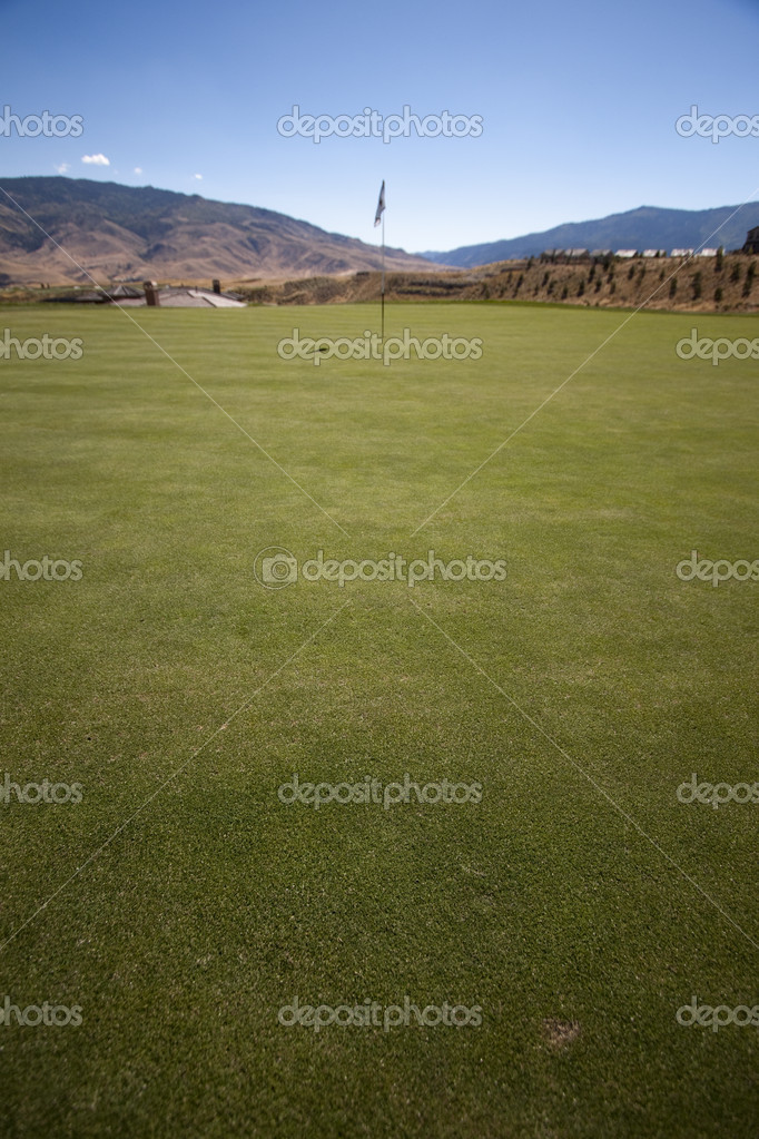 Golf course flag on the putting green grass landscape golfing — Stock Photo #5920200