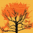Autumn vector tree with orange leaves, background for text — Stock Vector