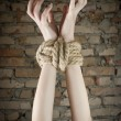 Stock Photo: Hands tied up with rope