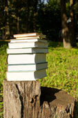 Stack of books laying outdoors on the stump — Stock Photo