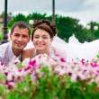 Happy bride and groom — Foto Stock
