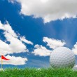 Golf ball — Stock Photo #5580719