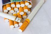 Cigarette — Stockfoto