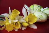 Eastern daffodils and eggs — Stock Photo