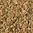 Cumin seeds — Foto de Stock