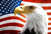 Eagle in the foreground with the American flag blurred — Stok fotoğraf