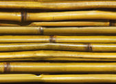 Beautiful Japanese bamboo background — Stock Photo