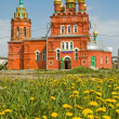 Church and camomiles - Stock Photo