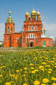 Church and camomiles — Stock Photo