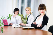 Office working of young business ladies — Стоковое фото