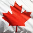 Flag of Canada — Stock Photo #6259537