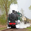 Stock Photo: Steam train slowing