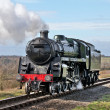 Stock Photo: Light running steam train