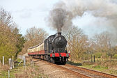 Gentle day out in steam — Stock Photo