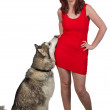 Red dress and dog — Stock fotografie