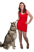 Red dress and dog — Stock Photo