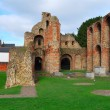 Priory Ruins — Stock Photo