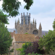 Stock Photo: Ely cathedral from trees