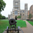 Canon and Ely cathedral — Stock Photo