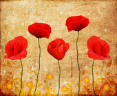 Poppies on an old paper — Stock Photo