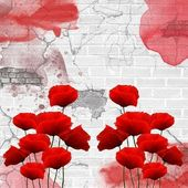 Poppies on a grunge wall — Stock Photo