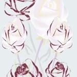 Beautiful roses — Stock Vector