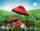魔法的大自然系列-魔法草甸 — 图库照片