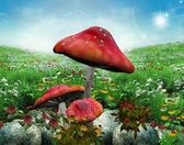 Serie naturaleza encantada - prado encantado — Foto de Stock