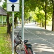 Bicycle way in the park - 图库照片