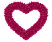Coração de amor-de-rosa — Fotografia Stock