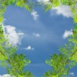 Love heart green leave against blue sky — Stock Photo