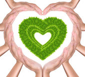 Green grass heart in hands — Stock Photo
